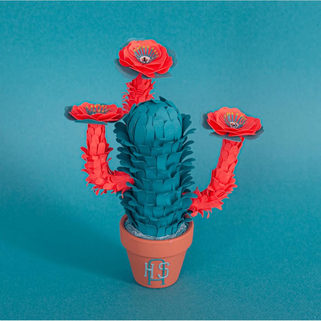 Cactussus Monstrus